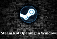 Steam Not Opening in Windows 10