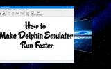 How to Make Dolphin Run Faster