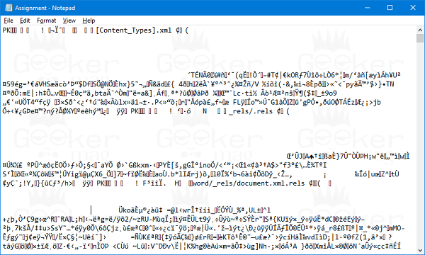 open word file in notepad