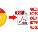 Google Chrome: How to Download PDF Files Instead of Opening