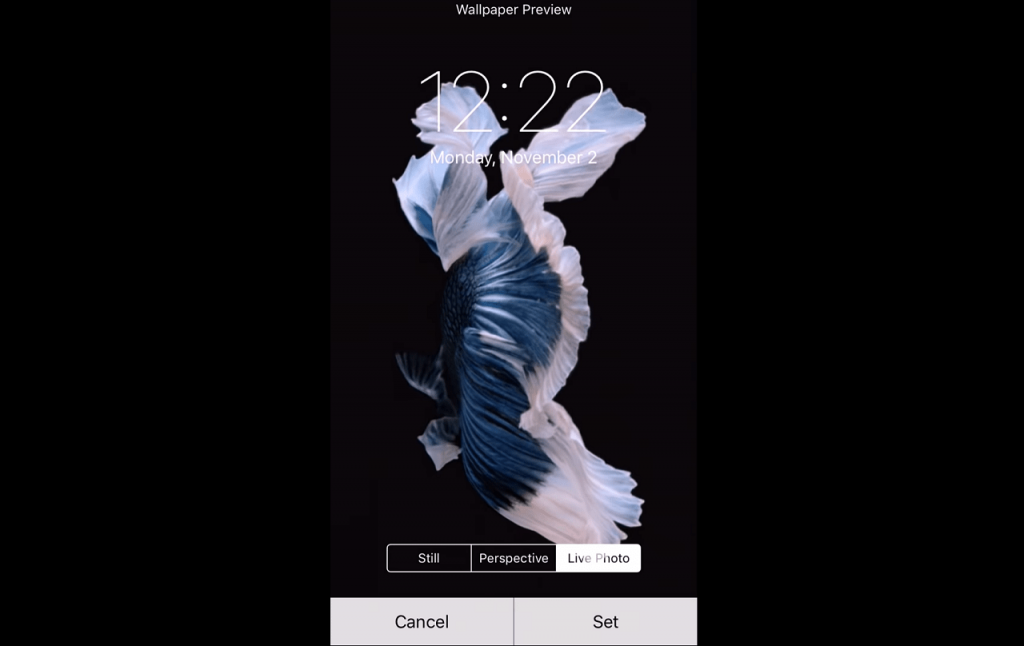 how to set live wallpaper on iphone 7 or above