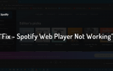 spotify web player not playing