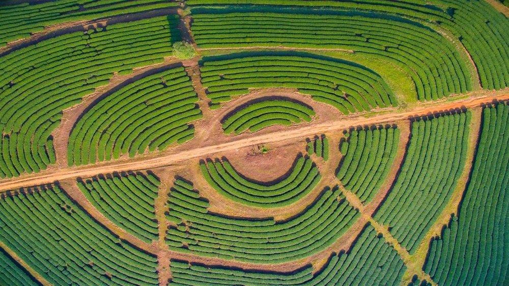 aerial farmland premium 4k theme for windows 10