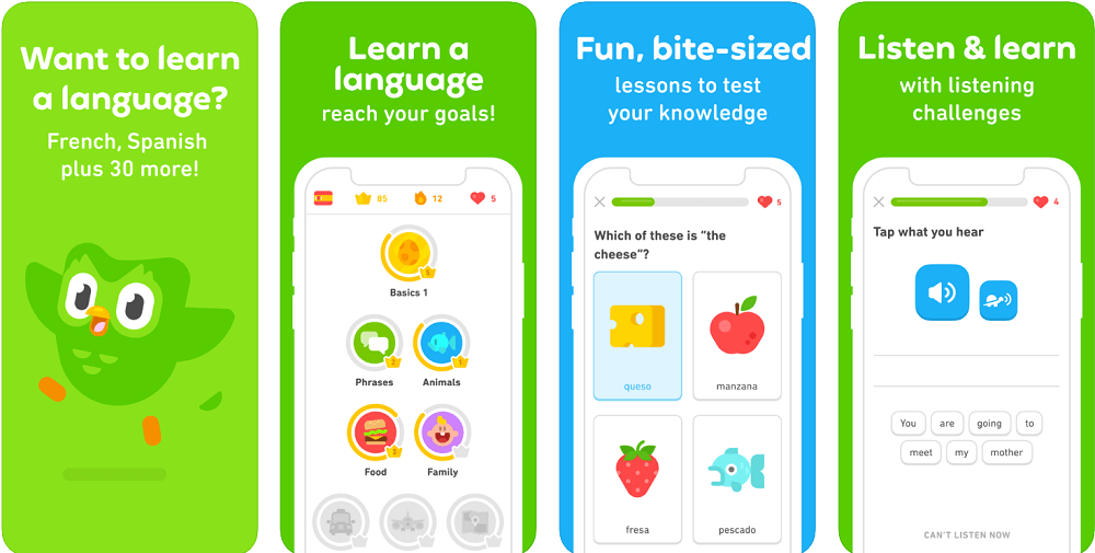 duolingo app for android and ios