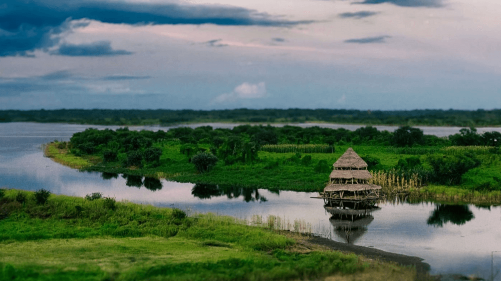 Amazon Landscapes Premium 4k theme for windows 10