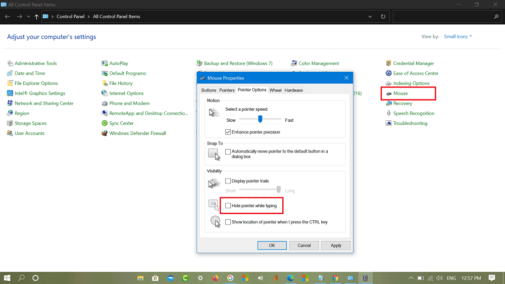 hide Pointer when Typing in control panel in windows 10