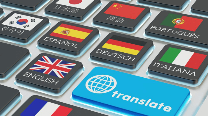 offfline translation software