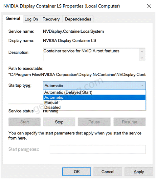 nvidia display container LS startup settings
