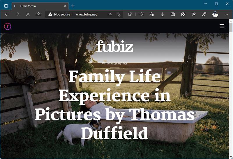 website like Bored Panda - Fubiz