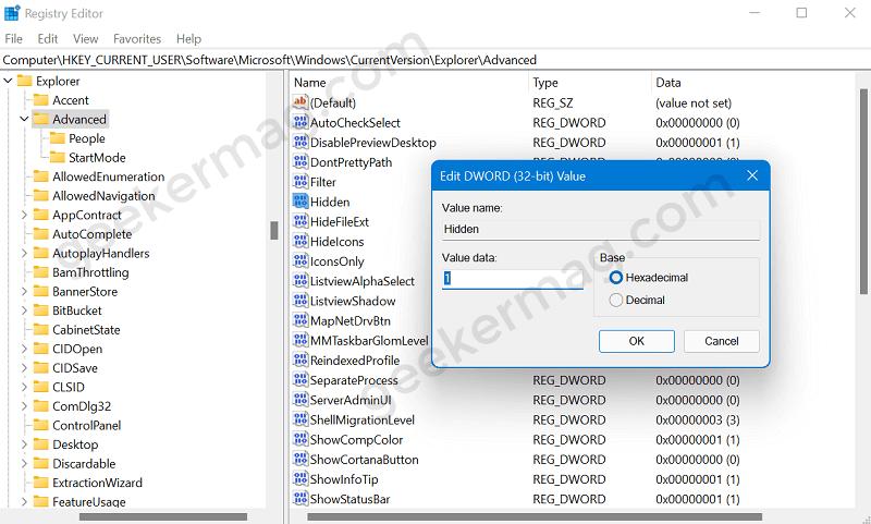 Show hidden files and folders in Windows 11 using registry editor.